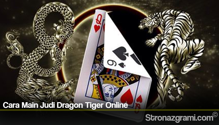 Cara Main Judi Dragon Tiger Online